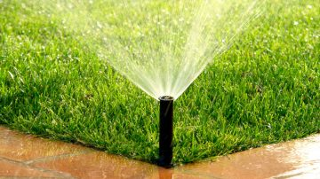Watering & Drainage