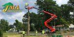 jma south jersey tree service