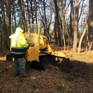 jma tree service stump grinder